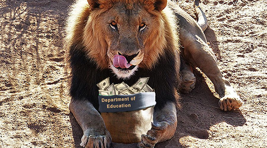 Lion eating Department of Education money