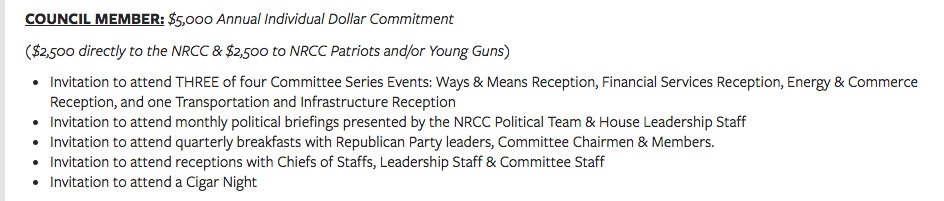 Council Member annual commitment
