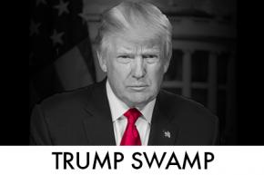Trump Chiclet