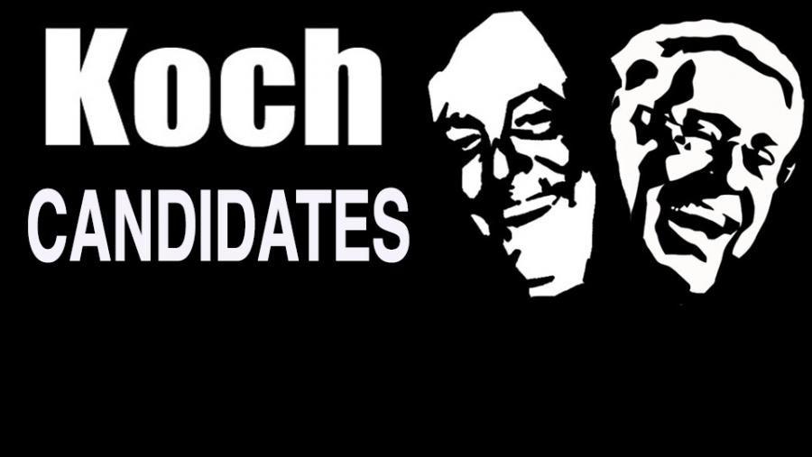 Koch candidates