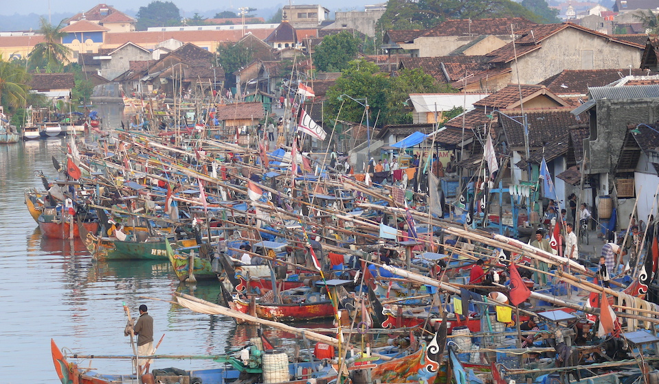100 Villages: How Bringing Back the Fish Will Repair the Climate